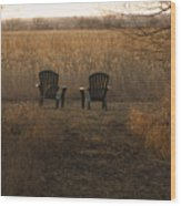 Chairs Overlook A Scenic Pasture Wood Print