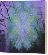 Chalice-tree Spirit In The Forest V1a Wood Print