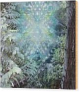 Chalice-tree Spirit In The Forest V3 Wood Print