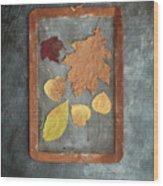 Chalkboard Leaves Wood Print