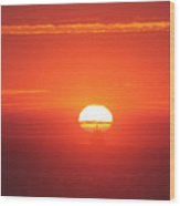 Challenging The Sun Wood Print