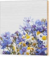 Chamomile And Cornflower Mix Wood Print
