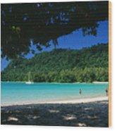 Champagne Beach Wood Print