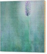 Chandelle Wood Print