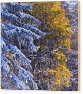 Change Of Seasons Wood Print