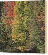 Changing Colours Of The Fall Wood Print