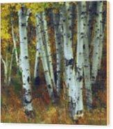 Changing Season Wood Print