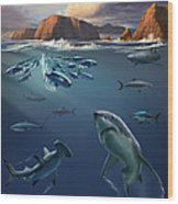 Channel Islands Sharks Wood Print