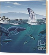 Channel Islands Whales Wood Print