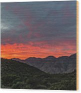 Chaparral Dreams Wood Print