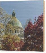 Chapel Dome Wood Print