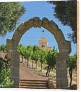 Chapel Hill Vineyard Wood Print