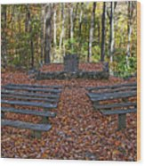The Chapel In The Park Wood Print