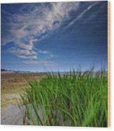 Chapin Beach Wood Print