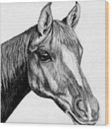 Charcoal Horse Wood Print