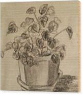 Charcoal Planter Wood Print