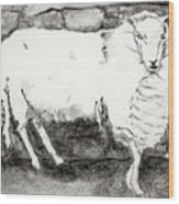 Charcoal Sheep Wood Print