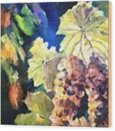 Chardonnay Vines Wood Print