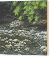 Charles On The Rocks Wood Print