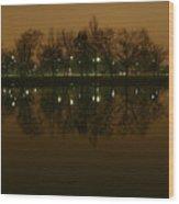 Charles River At Night Wood Print