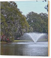 Charles Towne Landing Fountain Wood Print