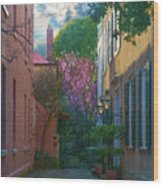 Charleston Alley In The Spring Wood Print