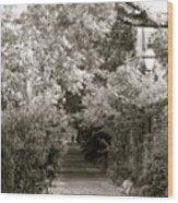 Charleston Alley Wood Print