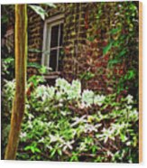 Charleston Alley Window Wood Print
