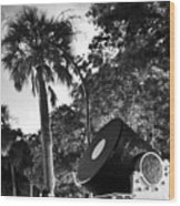 Charleston Battery Mortar  Wood Print
