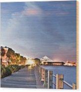 Charleston Battery Photography Wood Print by Dustin K Ryan