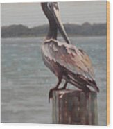 Charleston Pelican Wood Print