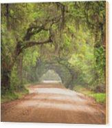 Charleston Sc Edisto Island Dirt Road - The Deep South Wood Print