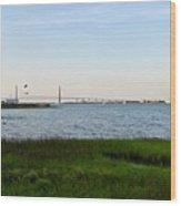 Charleston South Carolina Waterfront Park During Sunset Wood Print
