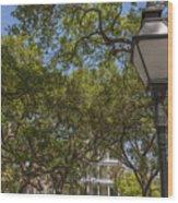 Charleston Through The Tree's Wood Print