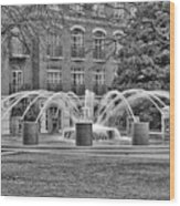 Charleston Waterfront Park Fountain Black And White Wood Print
