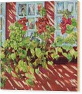Charleston Window Boxes Wood Print