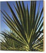 Charleston Yucca Wood Print