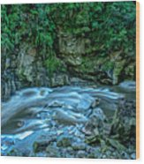 Charming Creek Walkway 1 Wood Print