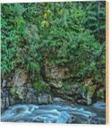 Charming Creek Walkway 2 Wood Print