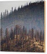 Charred Wood Print