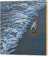 Chasing Waves Wood Print