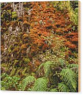 Chasm Creek Cutting Wood Print