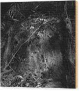 Chassahowitzka Number Four Wood Print