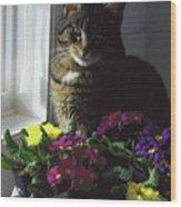 Chat Et Fleurs Wood Print