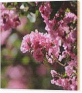 Chateau Rose Pink Flowering Crepe Myrtle  Wood Print