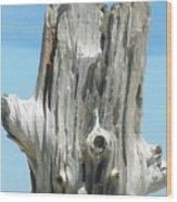 Chatham Driftwood Wood Print
