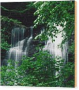 Chattahoochee Waterfall Wood Print