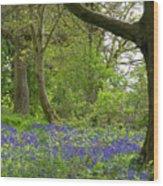 Chawton House Library,hampshire Wood Print
