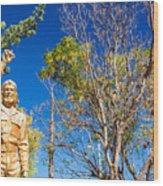 Che Guevara Statue In La Higuera Wood Print