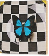 Checker Plate And Blue Butterfly Wood Print